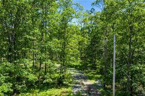 Photo of Trillium Trail, Cochecton, NY 12726 (MLS # 4969666)
