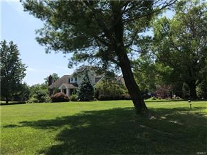 Photo of 1 Emily Lane, Mahopac, NY 10541 (MLS # 4739687)