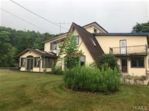 Photo of 172A Scheibe Road, Liberty, NY 12754 (MLS # 4854690)