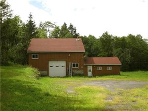 Photo of 3858 State Route 52, Youngsville, NY 12791 (MLS # 4904694)