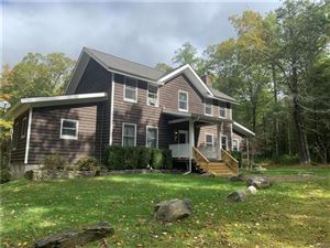 Photo of 153 Mail Road, Barryville, NY 12719 (MLS # 4949701)