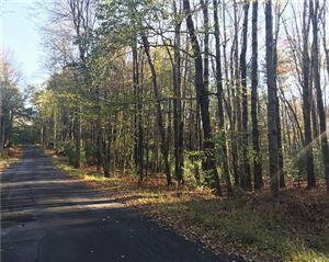 Photo of Old Tacy Road, Swan Lake, NY 12720 (MLS # 4848710)