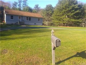 Photo of 217 Mail Road, Barryville, NY 12719 (MLS # 5117712)