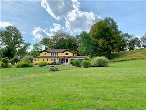 Photo of 114 Castle Hill Road, Parksville, NY 12768 (MLS # 5060720)
