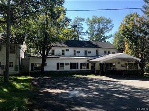 Photo of 6319 Nys Route 97, Narrowsburg, NY 12764 (MLS # 4846723)