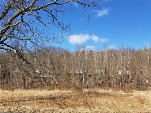 Photo of 11 Cossu Lane, Bloomingburg, NY 12721 (MLS # 6020728)