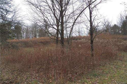 Photo of Old Glen Wild Road Tr 103, Woodridge, NY 12789 (MLS # 6009731)