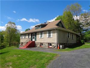 Photo of 487 East Branch Road, Patterson, NY 12563 (MLS # 5037752)