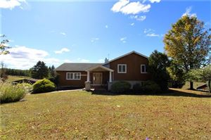 Photo of 159 Pine Hill Road, Chester, NY 10918 (MLS # 5090759)