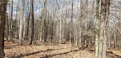 Photo of Drake Road, Neversink, NY 12765 (MLS # 6021769)