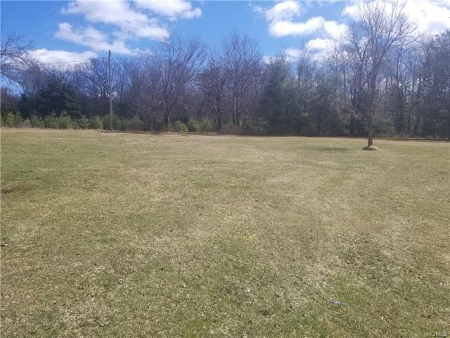 Photo of 905 Mount Vernon Road, Wurtsboro, NY 12790 (MLS # 5122771)