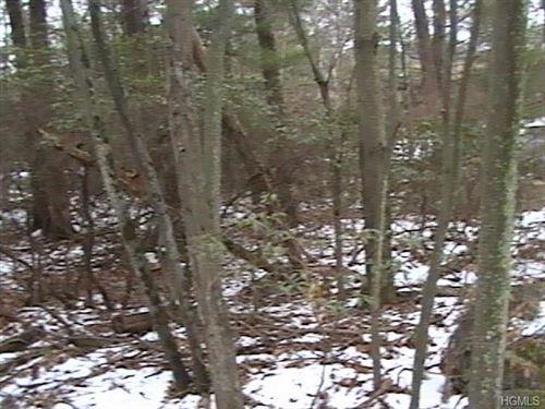 Tiny photo for Lake Shore Drive, Rock Hill, NY 12775 (MLS # 6010772)