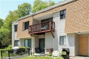 Photo of 116 Vista On The, Carmel, NY 10512 (MLS # 4820777)