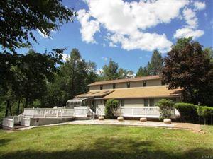 Photo of 126 Lake View Drive, Swan Lake, NY 12783 (MLS # 4974793)
