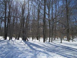 Photo of Heiden Road, Monticello, NY 12701 (MLS # 4911794)