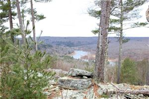 Photo of 1 Eagle View Road, Narrowsburg, NY 12764 (MLS # 4856795)