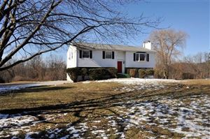 Photo of 7 Spring Hill Court, Wappingers Falls, NY 12590 (MLS # 4903810)