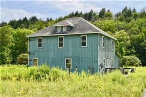 Photo of 857 Parksville Road, Parksville, NY 12768 (MLS # 5028813)