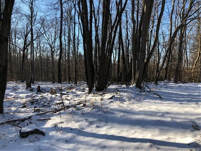 Photo for Houghtaling Road, Neversink, NY 12765 (MLS # 6005813)