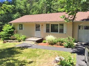 Photo of 107 Yulan Barryville Road, Barryville, NY 12719 (MLS # 4831817)