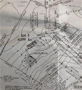 Photo of NYS Route 209 Lot 1, Wurtsboro, NY 12790 (MLS # 4847821)