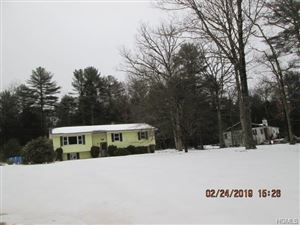 Photo of 2 Collins Road, Eldred, NY 12732 (MLS # 4911838)