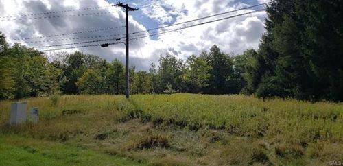 Tiny photo for 1022 Shandelee Road, Livingston Manor, NY 12758 (MLS # 6005841)