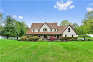 Photo of 58 Manor Road, Patterson, NY 12563 (MLS # 4821844)
