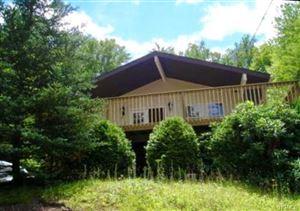Photo of 17 Birch Lane, Swan Lake, NY 12783 (MLS # 4993853)