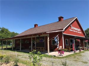 Photo of 1706 State Route 52, Liberty, NY 12754 (MLS # 5009870)