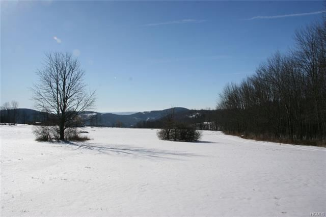 Photo for 00 Bayer Road, North Branch, NY 12766 (MLS # 6006874)
