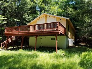 Photo of 71 Berkshire Trail, Smallwood, NY 12778 (MLS # 4827875)