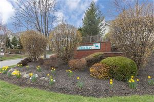 Photo of 79 Deer Ct Drive, Middletown, NY 10940 (MLS # 4821901)