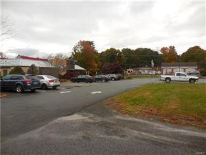 Photo of 238 Main Street, New Paltz, NY 12561 (MLS # 4847901)