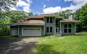 Photo of 915 Pumpkin Lane, Clinton Corners, NY 12514 (MLS # 4962901)