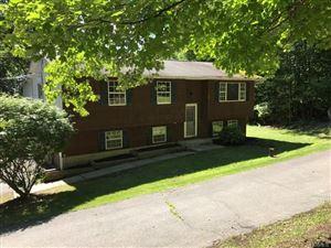 Photo of 51 Shawanga Lodge Road, Bloomingburg, NY 12721 (MLS # 4837912)