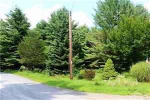 Photo of Etheline / Rocky Mountain Road, Kerhonkson, NY 12446 (MLS # 4836929)