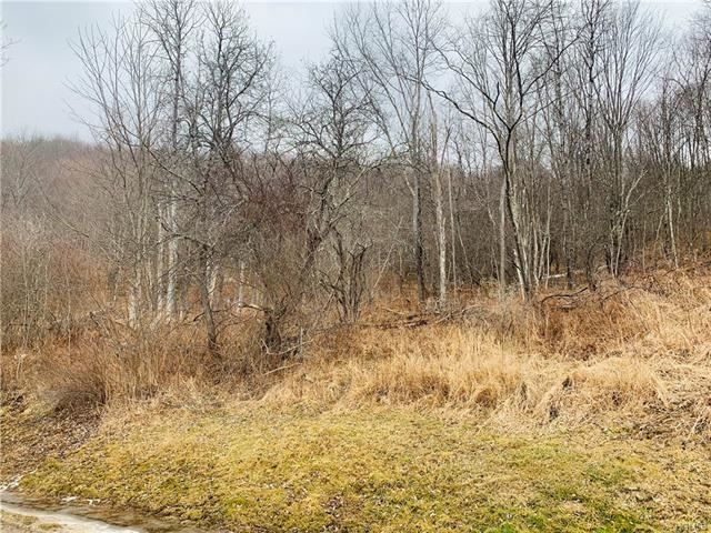 Photo for N/A DeBruce Road, Livingston Manor, NY 12758 (MLS # 6009934)