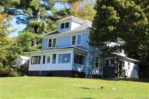 Photo of 466 Old Route 17, Livingston Manor, NY 12758 (MLS # 5069936)