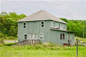 Photo of 857 Parksville Road, Parksville, NY 12768 (MLS # 4911973)