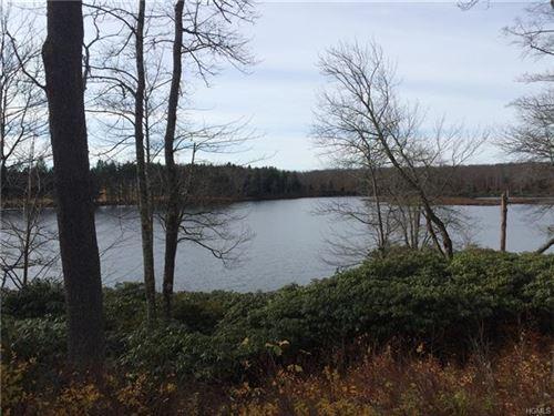 Photo of N/A Little Ireland Road, Livingston Manor, NY 12758 (MLS # 6007979)