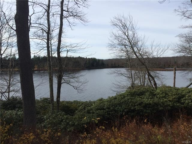 Photo for N/A Little Ireland Road, Livingston Manor, NY 12758 (MLS # 6007979)