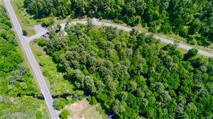 Photo of 2 Chapin Trail, Bethel, NY 12720 (MLS # 4909992)