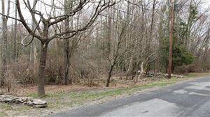 Photo of Smith Lane, Grahamsville, NY 12740 (MLS # 4922996)