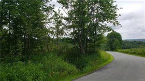 Photo of Tuttle Hill Road, Livingston Manor, NY 12758 (MLS # 5069997)