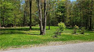 Photo of Smith Lane, Grahamsville, NY 12740 (MLS # 4922999)