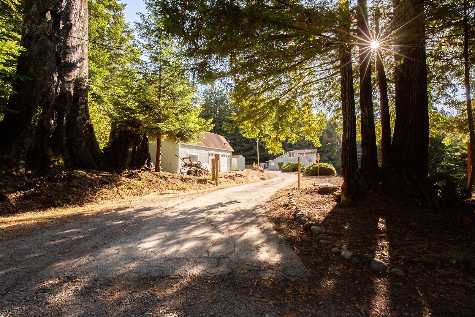 1192 Fox Creek Road, Carlotta, CA 95528 - MLS#: 260231