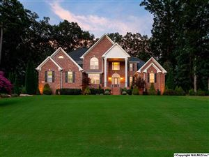 Photo of 110 RED BRANCH DRIVE, MADISON, AL 35758 (MLS # 1108006)