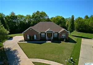 Photo of 119 FUTURITY WAY, MERIDIANVILLE, AL 35759 (MLS # 1115048)
