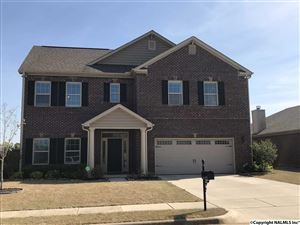 Photo of 2513 FIRST HILL CIRCLE, HUNTSVILLE, AL 35803 (MLS # 1092082)